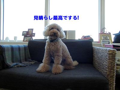 20091010_1.jpg