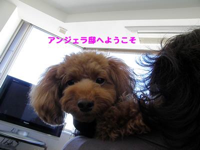 20091010_2.jpg