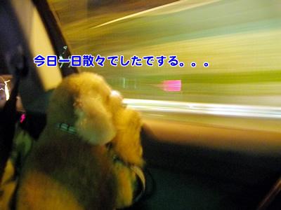 20091021_11.jpg