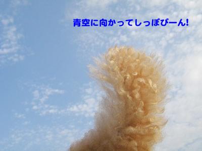 20091021_2.jpg