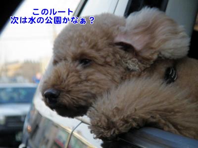 20091021_7.jpg