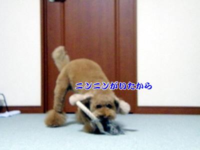 20091023_8.jpg