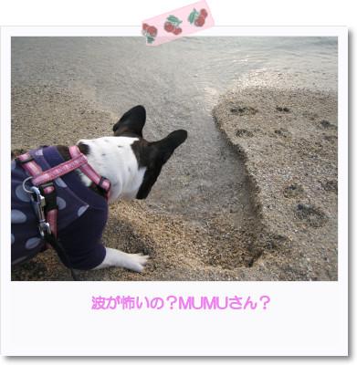 [photo05011459]image[1]