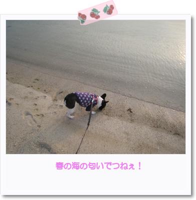 [photo05011183]image[1]