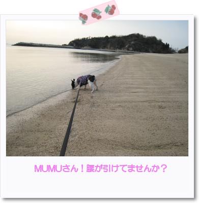[photo05011243]image[1]