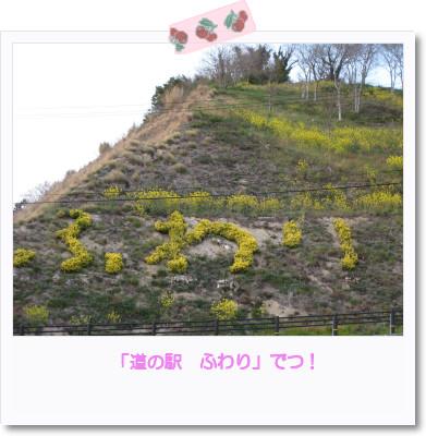 [photo05012543]image[1]