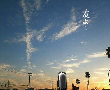 20090910-02.jpg