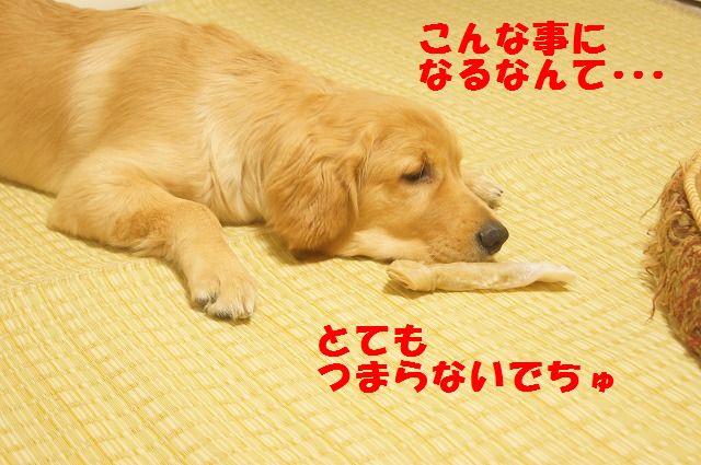 00002_20120407205714.jpg