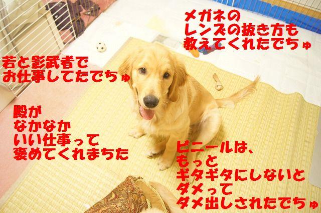 00008_20120403204712.jpg