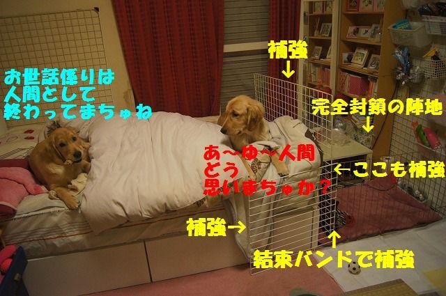 00009_20120403204711.jpg