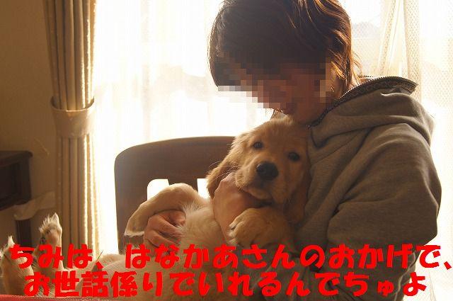 001_20120131225148.jpg