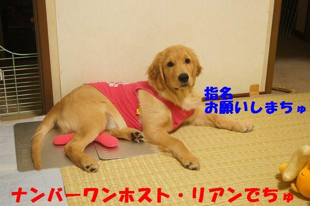 001_20120321000353.jpg