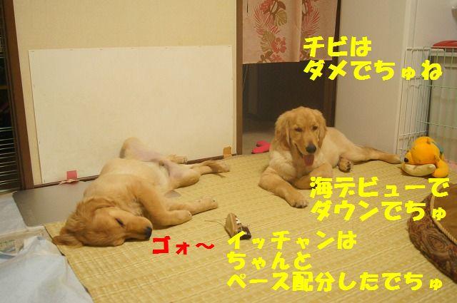 001_20120325204414.jpg