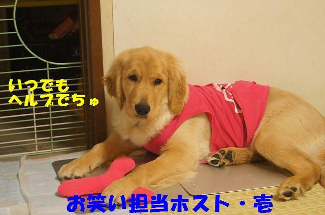 002_20120321000352.jpg
