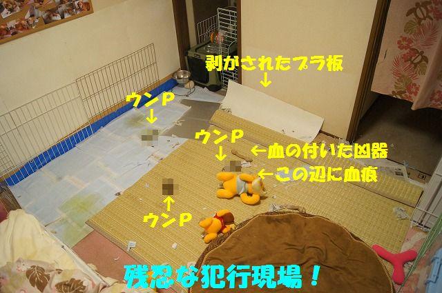 002_20120324212119.jpg