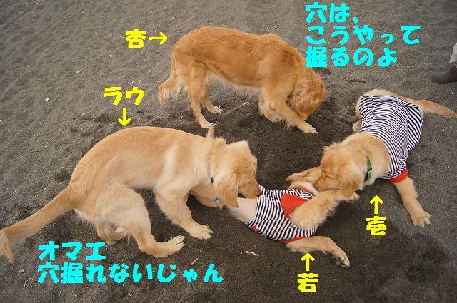 003_20120324212118.jpg