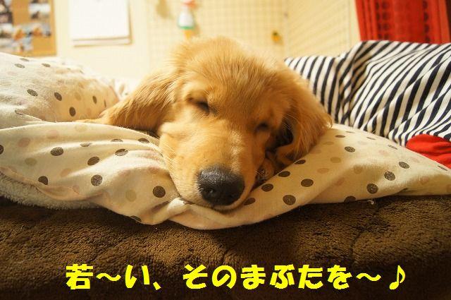 004_20120317221050.jpg