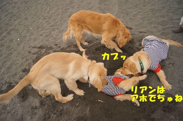 004_20120324212118.jpg