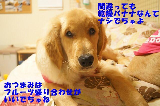 005_20120321000351.jpg