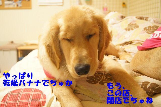 006_20120321000350.jpg