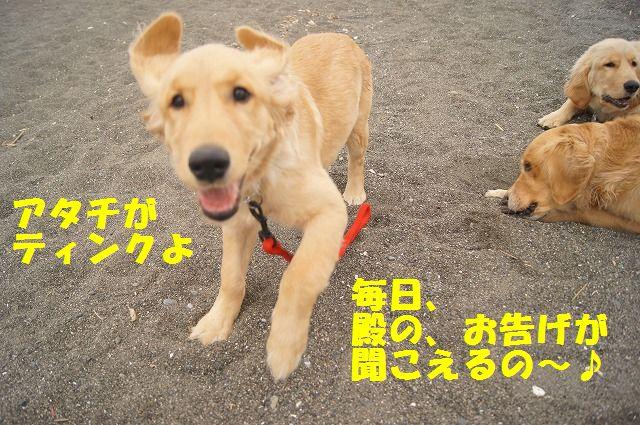 006_20120324212117.jpg
