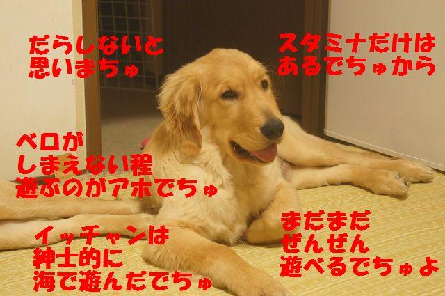 006_20120325204410.jpg
