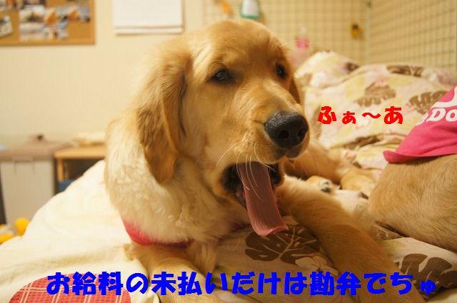 007_20120321000414.jpg