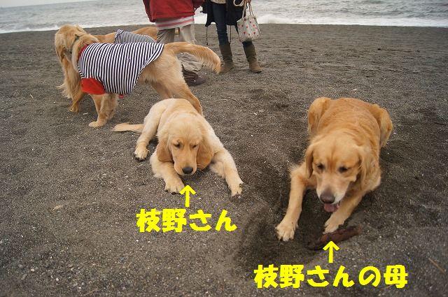 007_20120324212151.jpg