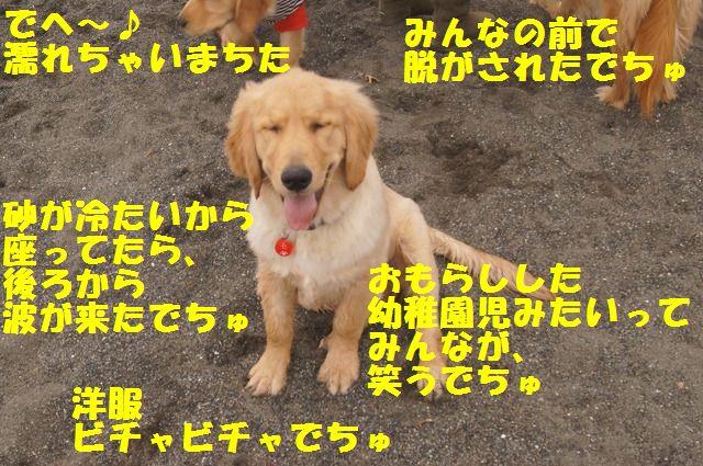 009_20120324212150.jpg