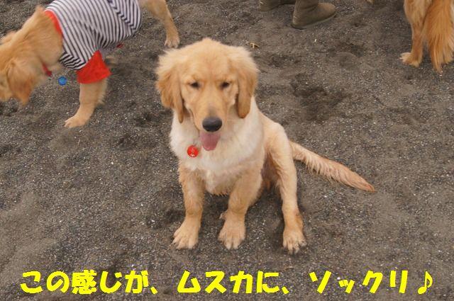 010_20120324212149.jpg