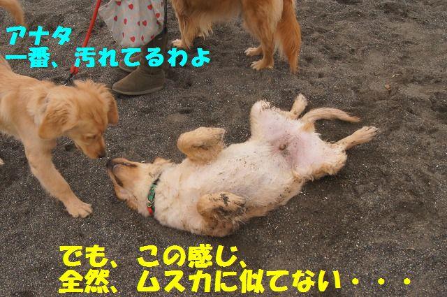 011_20120324212149.jpg