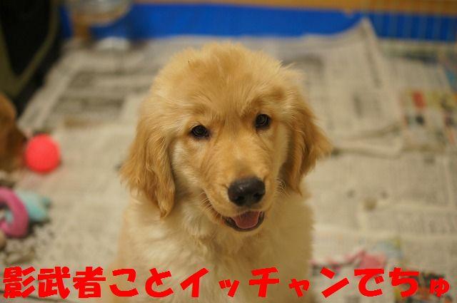 10_20120117221941.jpg