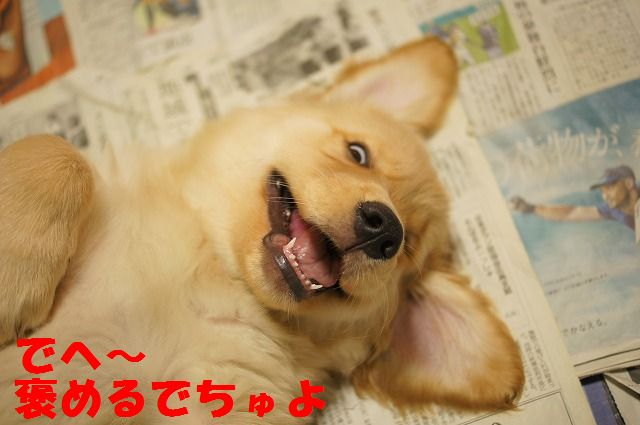 10_20120122230336.jpg