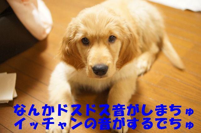 11_20120122230336.jpg