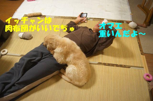 11_20120125214205.jpg