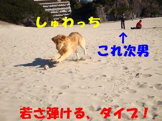 136_20111130212216.jpg