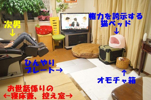 13_20120125214204.jpg