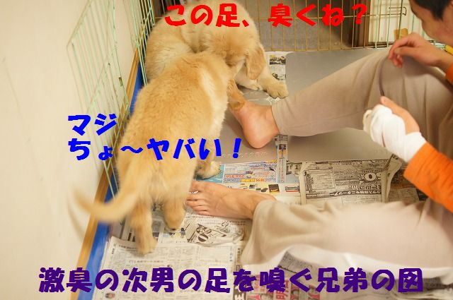 15_20120118203903.jpg