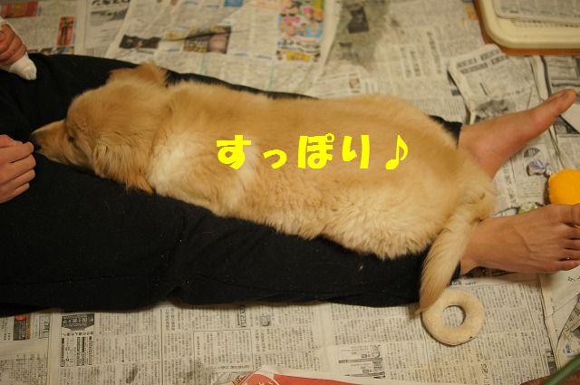 15_20120119222517.jpg
