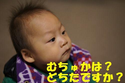 1_20111127214200.jpg