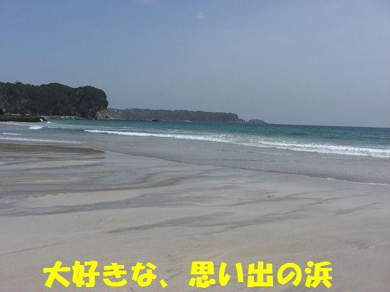 1_20111208220402.jpg