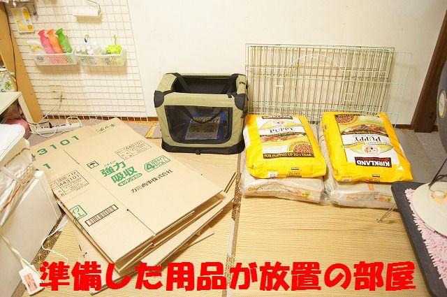 1_20120110213833.jpg