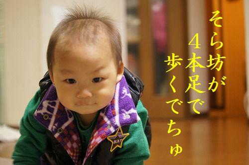 2_20111127214152.jpg