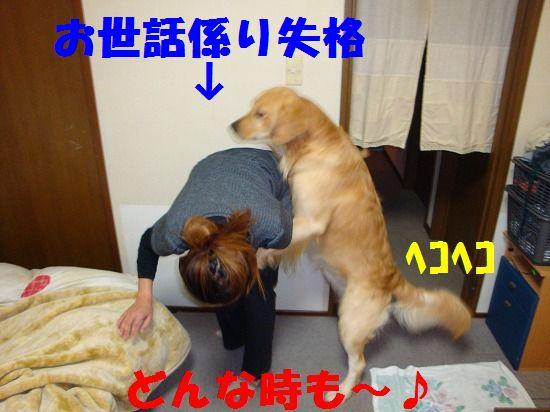 2_20111207193800.jpg