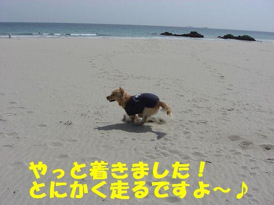 2_20111208220402.jpg