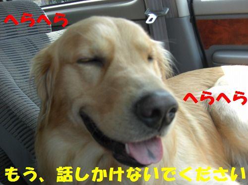 2_20111216203516.jpg