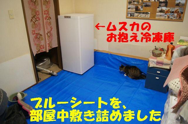 2_20120110213833.jpg