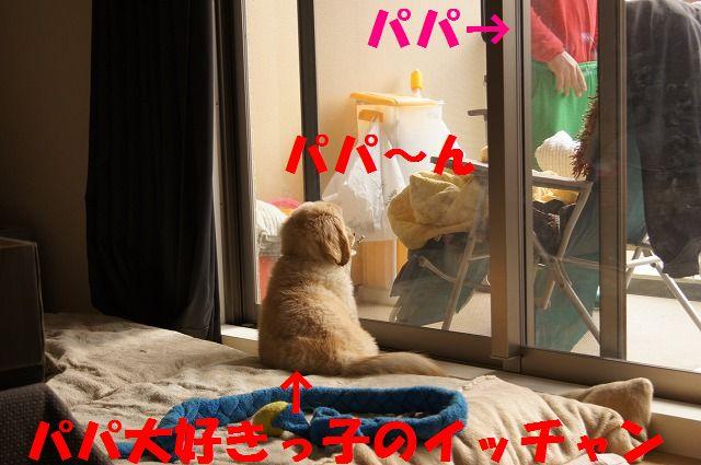2_20120117221914.jpg