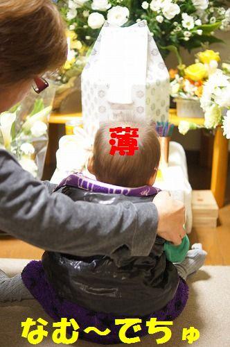 3_20111127214151.jpg