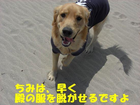 3_20111208220401.jpg